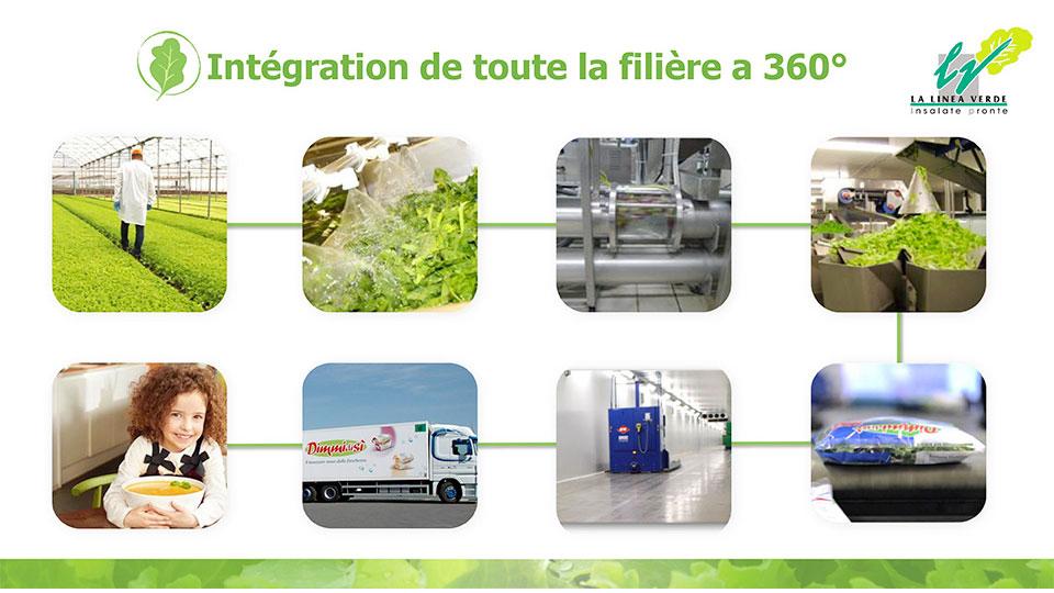 Integration de toute la filiére La linea verde