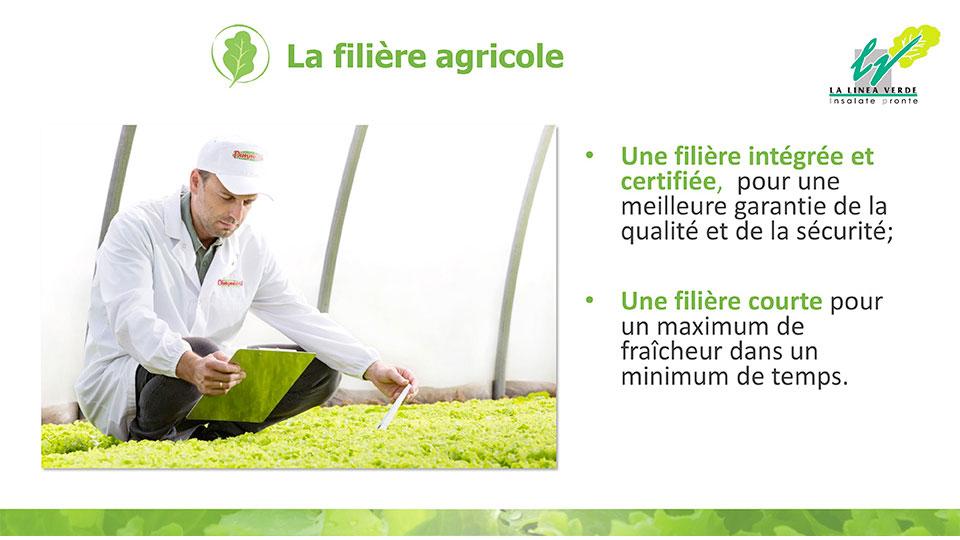 La filière agricole La linea verde