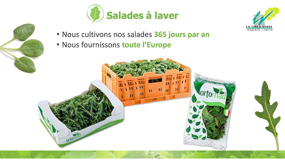 Salades à laver