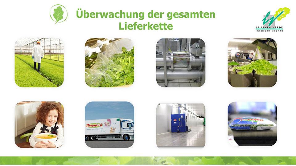 Überwachung der geamten Lieferkette La linea verde