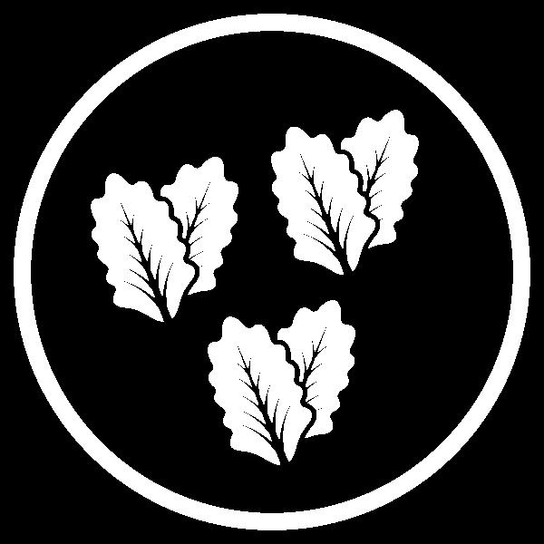 icone-materia-prima-white