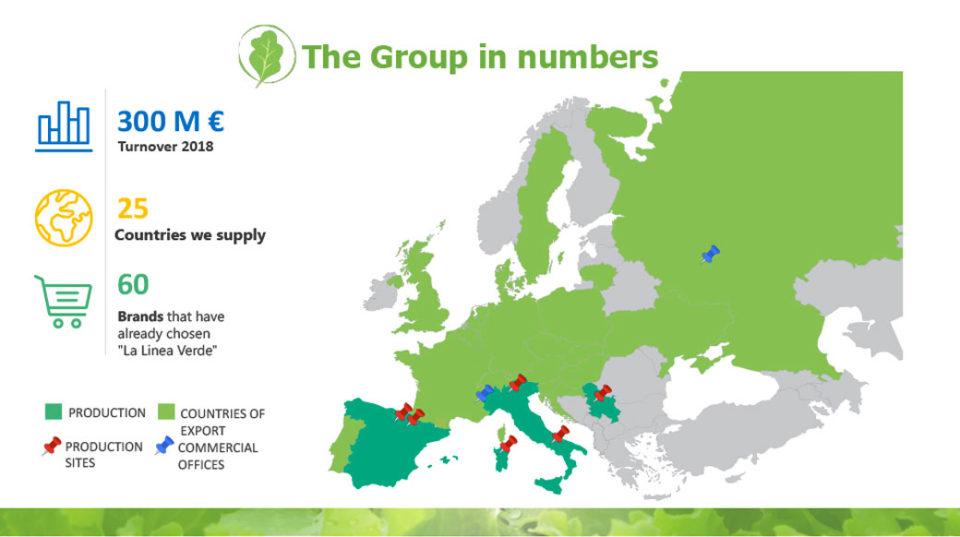 The group in number La linea verde