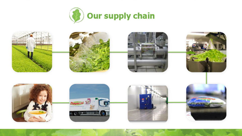 ur supply chain La linea verde