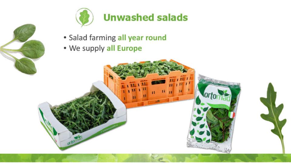 unwashed salads La linea verde