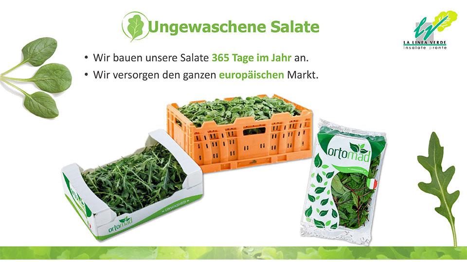 ungewashene salate La linea verde